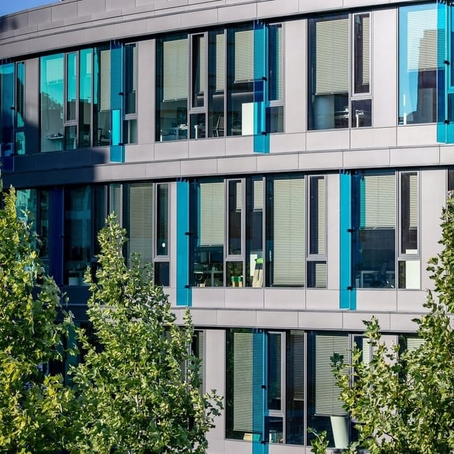 C 50 window lamellae window blinds