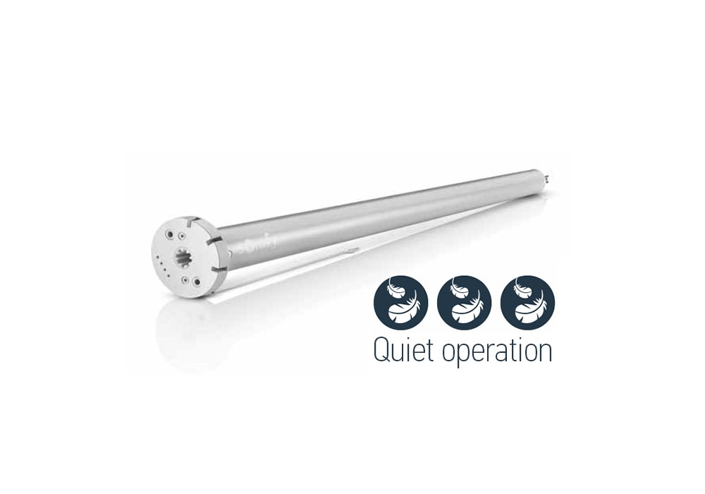 Roller blinds motor