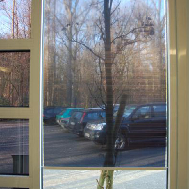 See through roller blinds sales